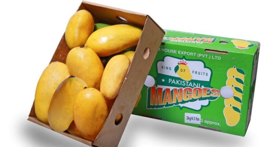 Pakistani mangoes en route to U.S. market – Farm House Export (Pvt.) Limited